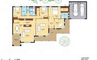 Longford-32-Colored-Floor-Plan